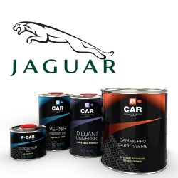 peinture jaguar. Black Bedroom Furniture Sets. Home Design Ideas