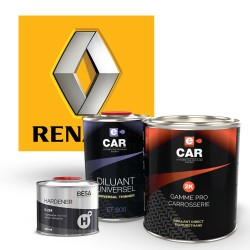 Kit Peinture Renault Brillant Direct