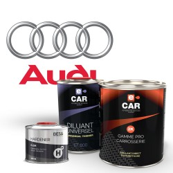 Kit Peinture Audi Brillant Direct