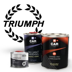 Kit Peinture Triumph Brillant Direct