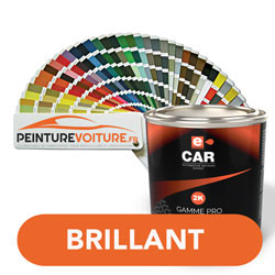 Peinture RAL Brillant Direct
